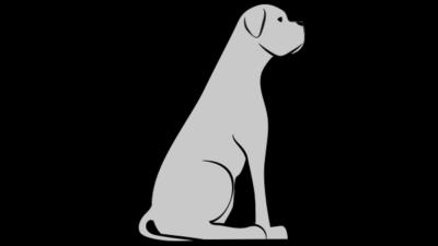Pies mało aktywny